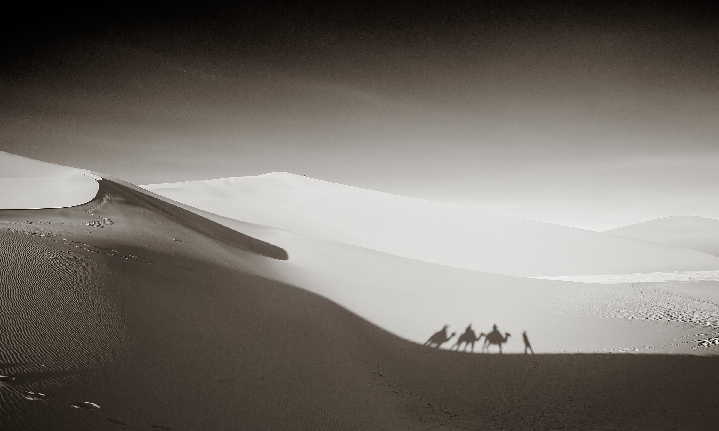 A mini caravan makes its way across the sand after a sunrise trek.