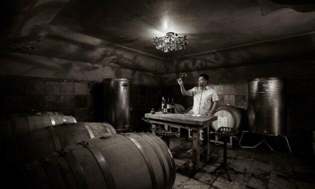 Santori Wine Maker