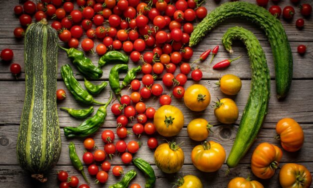 Napa Valley Food Photographer